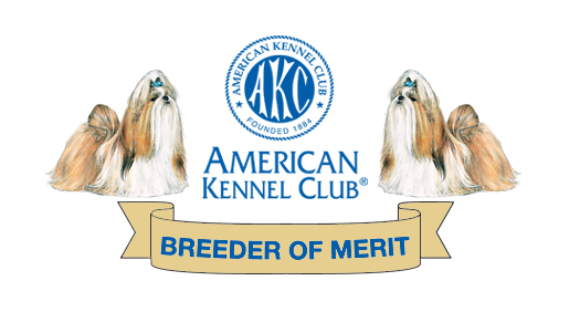 Shih Tzu Club Of America Breeder